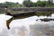 Niger delta pollution