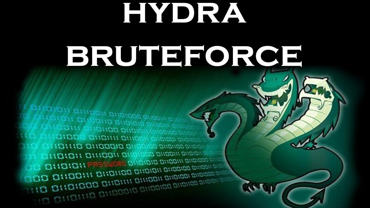 tutorial brute force hydra