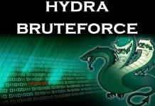 THC-Hydra Tool