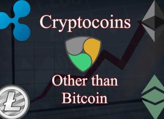 Cryptocurrencies Other Than Bitcoins