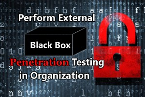 Black-box Penetration Testing
