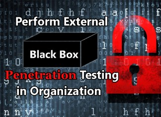 Black-box Penetration Testing
