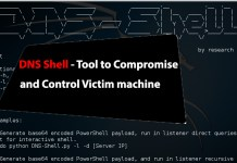 DNS Shell