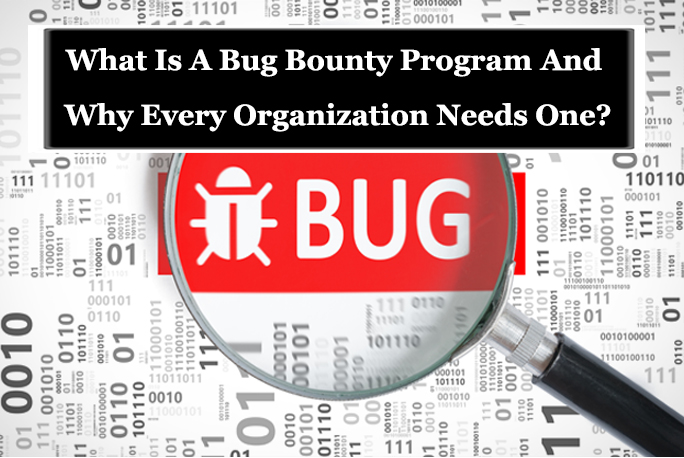 Bug Bounty  - Bug bounty - What Is A Bug Bounty Program And Why Every Organization Needs One?