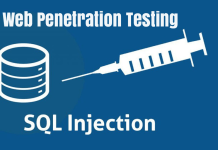 Manual SQL Injection