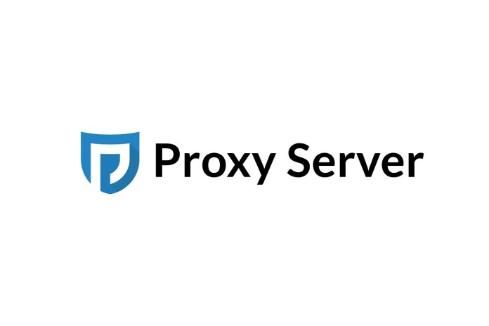 Proxy Server  - proxy server - Proxy Server – Import Method & usage to Prevent Yourself From Hackers