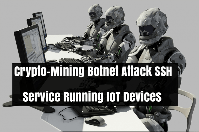 SSH Service  - 34fkX1530418146 - Cryptocurrency-Mining Botnet Attack SSH Service Running IoT Devices