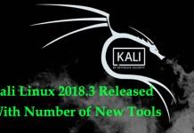 Kali Linux 2018.3