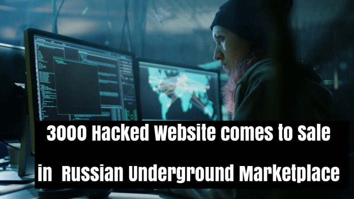 Hacked Websites  - MSsYp1537488919 - 3000 Hacked Websites Access comes to Sale in Dark Web Marketplace