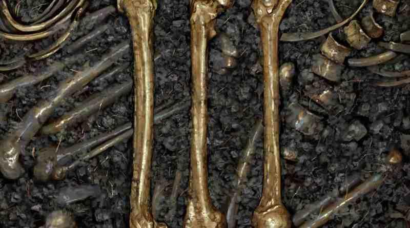 Album Review: Bone Man – III (Pink Tank Records)
