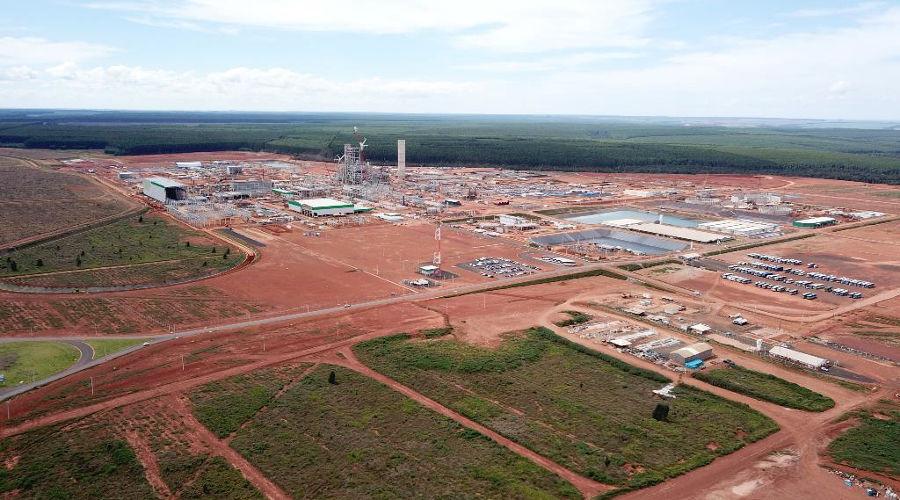 Brasil terá celulose de uso têxtil em 2022