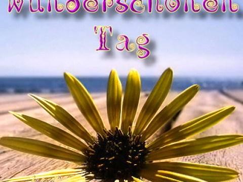 bilder schönen tag schönen tag - gb pics, gb bilder, gästebuchbilder, facebook