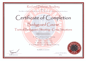 Raid and Defense Academy - Bodyguard shooting - Crisis situations