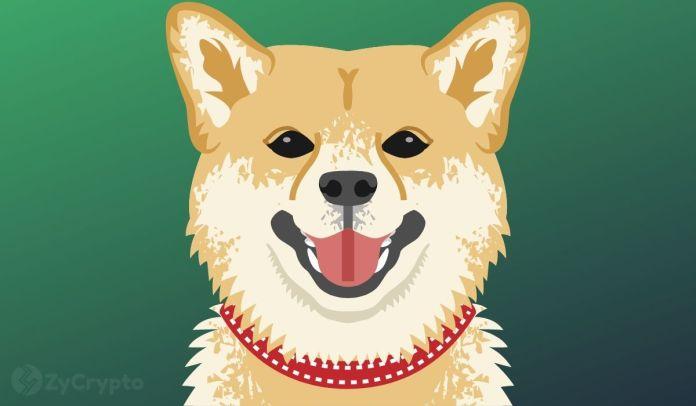 DOGE tire alors que la nouvelle image Twitter d'Elon Musk excite les fans de la Légion de Dogecoin