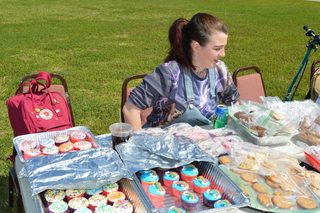 Cupcakes sold at Galveston College Spring Fling Main Campus