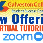Virtual Tutoring