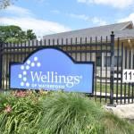 Wellings of Waterford