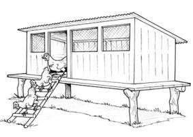 YAP proposal #120: Poultry Farming (Meshack L Mwakar