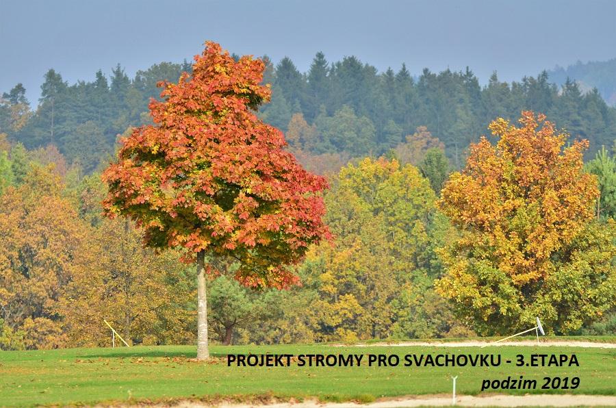 Stromy pro Svachovku – 3.etapa výsadby