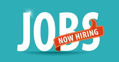 ASP.net Job in Dubai