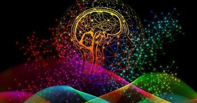 brain-boosting diet
