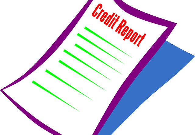 Importance of Credit Scores in Business