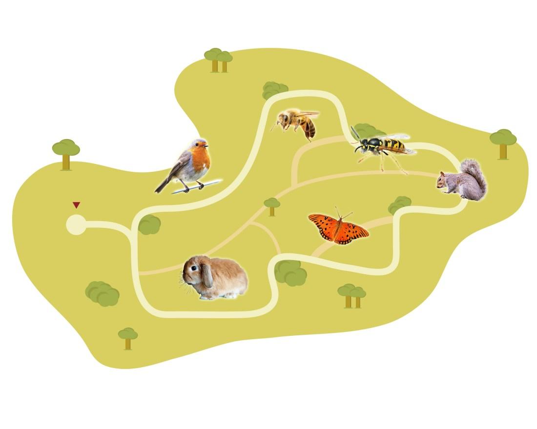 Evolution Zoo – a Population Online Installation