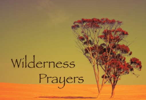 Wilderness Prayers