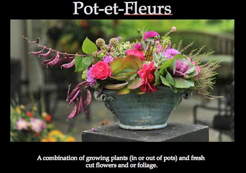 Pot et Fleurs
