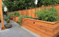 Do I Really Need a Landscape Design? - Vancouver Landscape ...