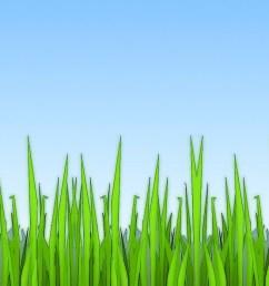 grass clipart free clip art images [ 1100 x 850 Pixel ]