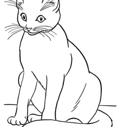 cat black and white realistic coloring pages of cats clipart [ 768 x 1024 Pixel ]