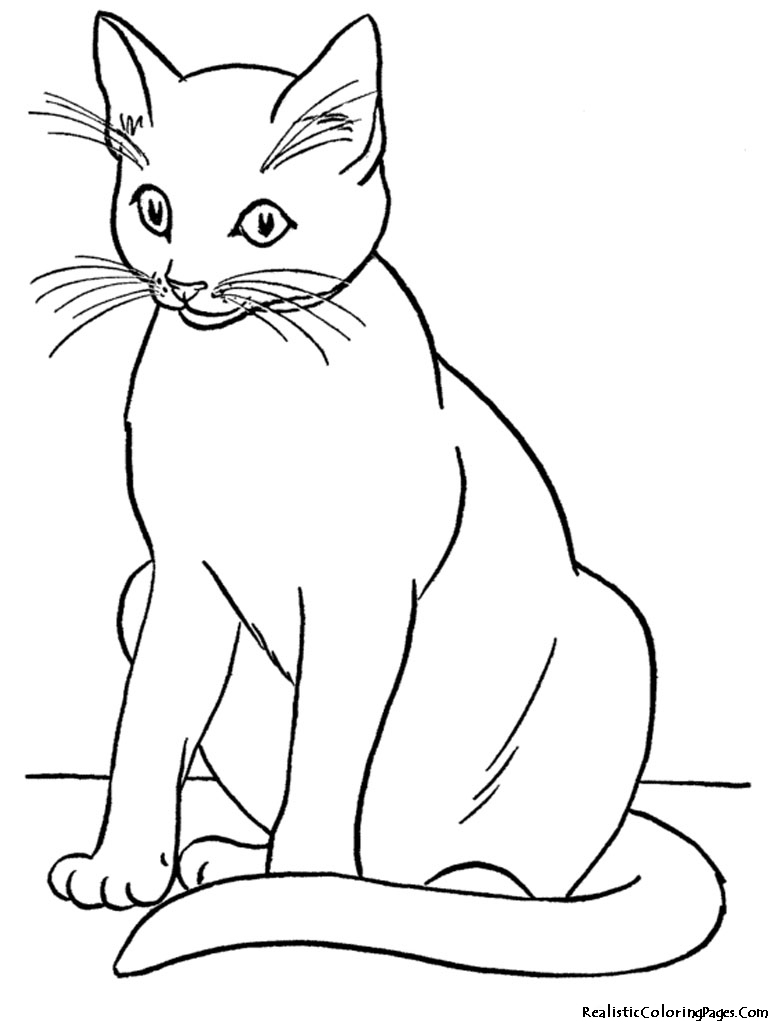 hight resolution of cat black and white realistic coloring pages of cats clipart