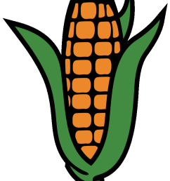 surprising corn clipart for free fruit names a with pictures 3 [ 720 x 1280 Pixel ]