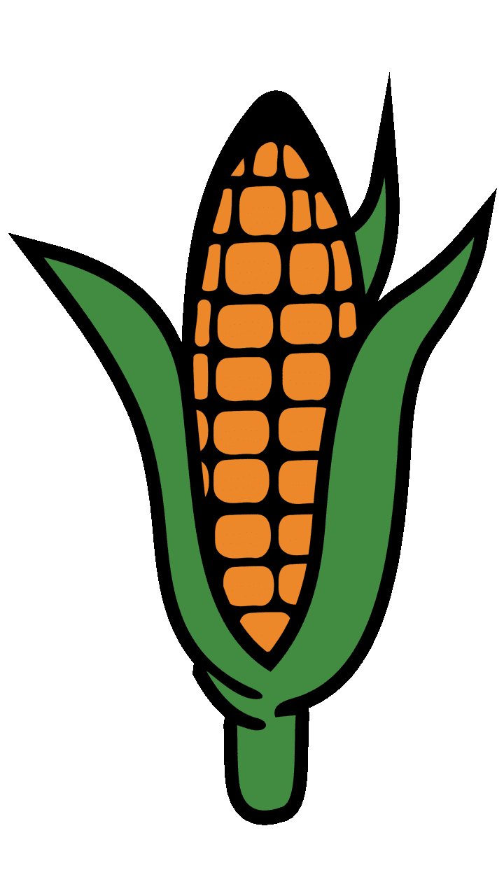 hight resolution of surprising corn clipart for free fruit names a with pictures 3