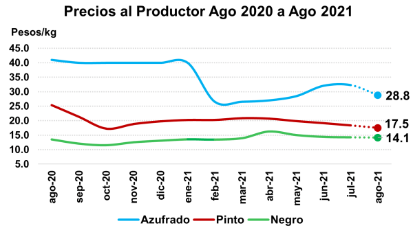 Superficie sembrada con frijol en el ciclo PV 2021 fue menor a lo programado, debido a las intensas lluvias Precios al Productor