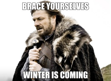 "Ned stark in fur clutching a sword with the text ""Brace yourselves winter is coming"" overlaid on top of it"