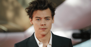 WATCH: Harry Styles Stops Show To Help Fan Come Out