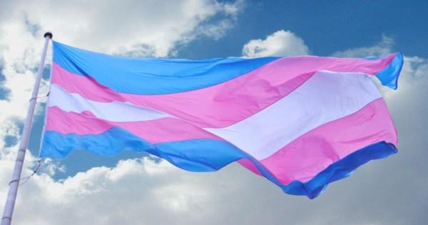 Transgender flag flys in front of a blue sky