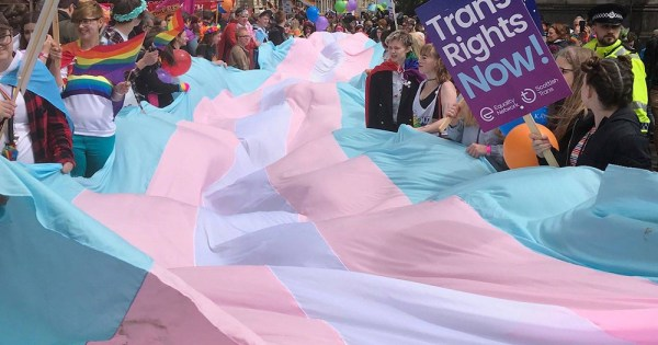 A large transgender flag held by many people