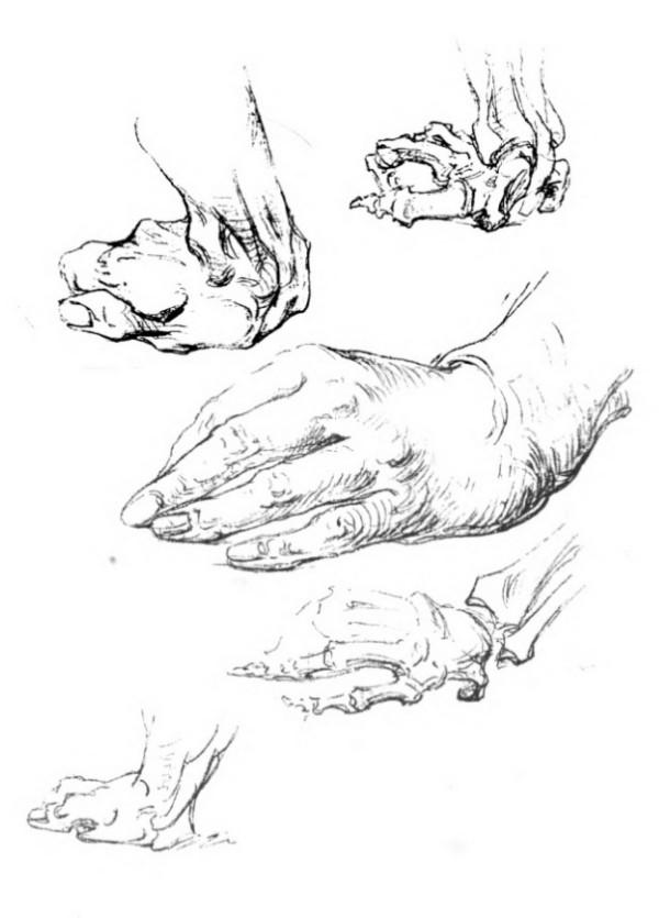 bridgman-libro-cien-manos-la-muñeca