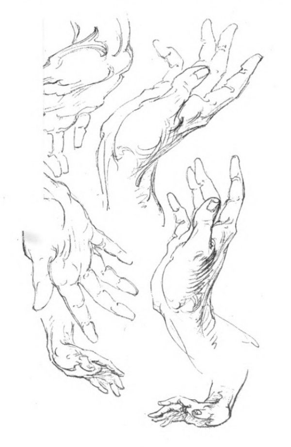 bridgman-libro-cien-manos-pulgar-lado-palma