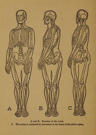 practical-art-anatomy-detail2