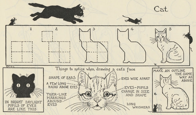 What to Draw Cat