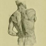anatomia-humana-para-artistas