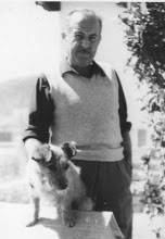 el-vengador-alado-autor-alberto-romero
