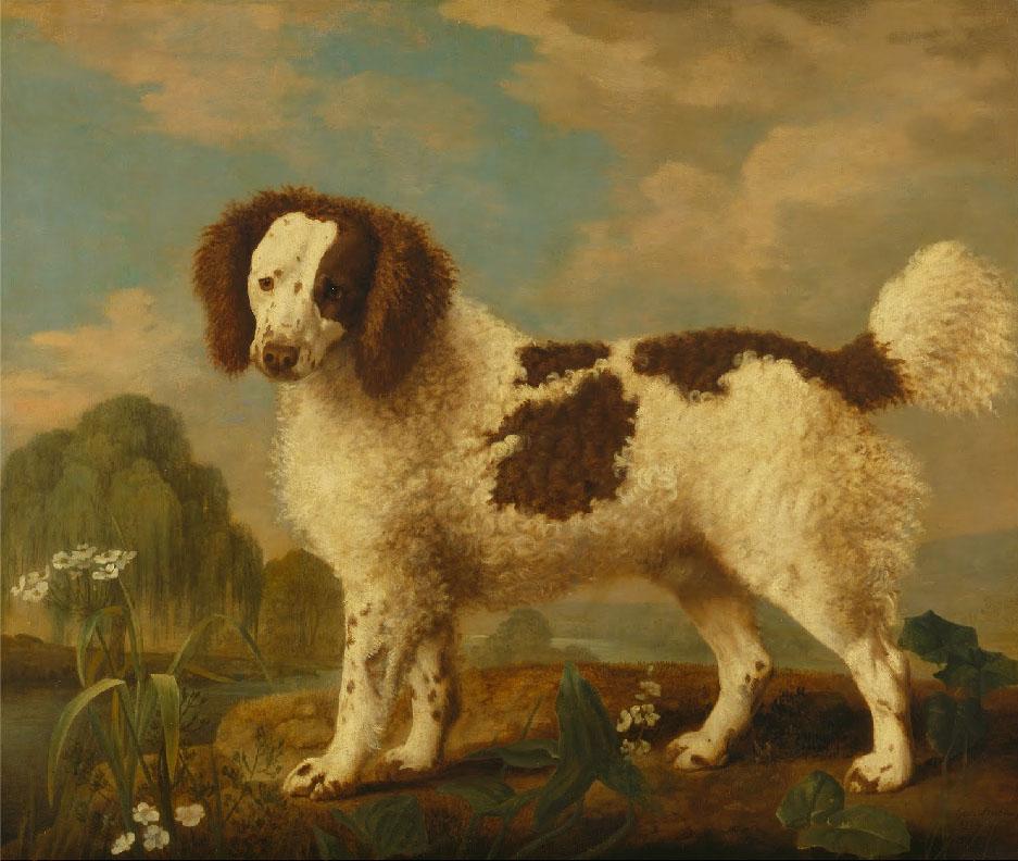 george-stubbs-pintura-caballo