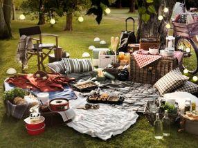 picnic_0